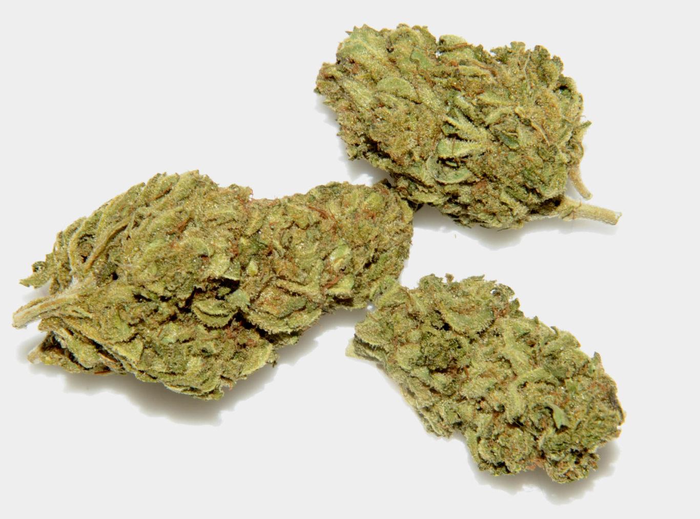 Vente en gros de cannabis CBD Suisse