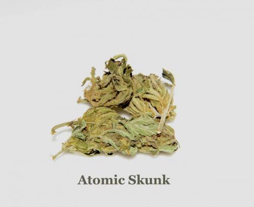 LeRiff-Atomic-Skunk