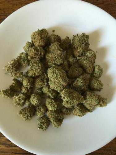 cbd-cannabis-vente-en-gros-grossistes-professionnelle-distributeurs-fournisseurs-importateurs-exportateurs-08